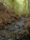 A stream in an erosional valley