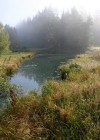 �umava Mountains - Tepl� Vltava river - an oxbow lake with rare plant species
